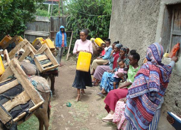 Eselverteilung in Äthiopien